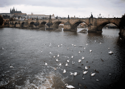 Karel's Bridge Prague