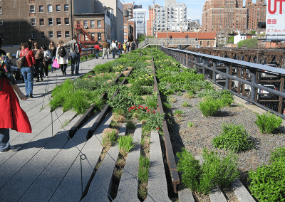 Line Park NYC